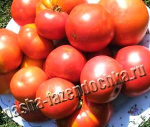 Томат (помидор), томатный сок