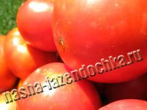Томаты (помидоры) - польза и вред