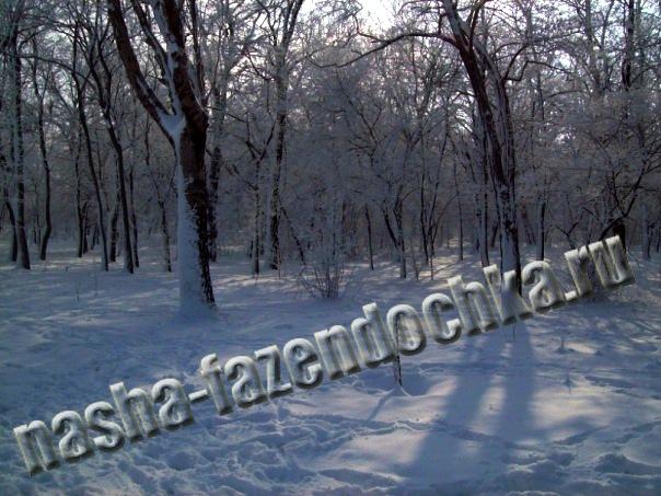 зима, снег в саду