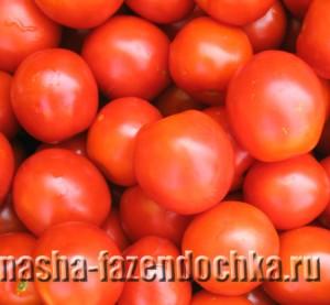 Выращиваю помидоры с применением черной пленки