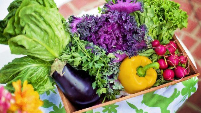 овощи, осенняя диета